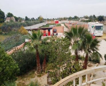 Crevillent,Alicante,España,7 Bedrooms Bedrooms,6 BathroomsBathrooms,Lotes-Terrenos,25057
