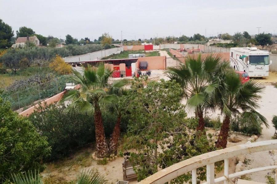 Crevillent,Alicante,España,7 Bedrooms Bedrooms,6 BathroomsBathrooms,Lotes-Terrenos,25057