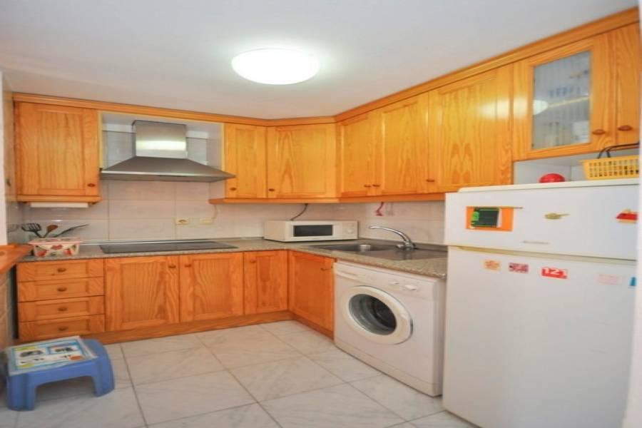 Torrevieja,Alicante,España,2 Bedrooms Bedrooms,1 BañoBathrooms,Adosada,25150