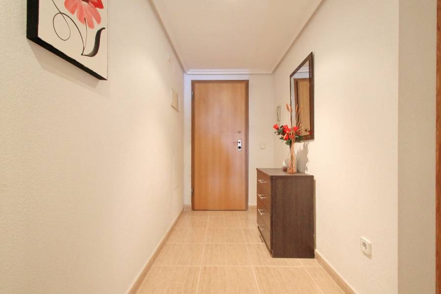 Torrevieja,Alicante,España,3 Bedrooms Bedrooms,2 BathroomsBathrooms,Apartamentos,25162