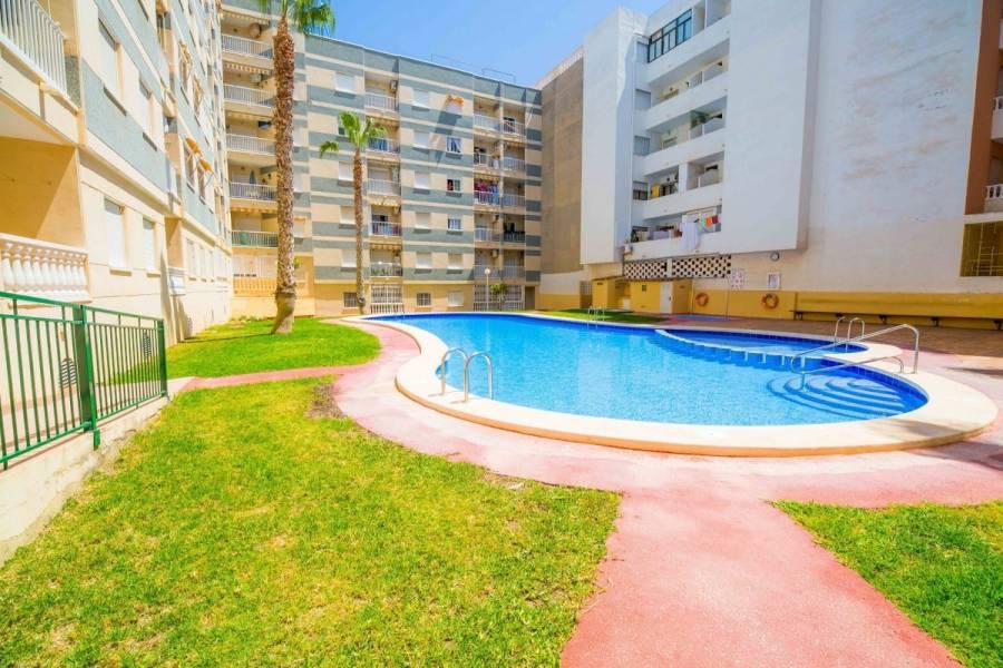 Torrevieja,Alicante,España,2 Bedrooms Bedrooms,1 BañoBathrooms,Atico,25206