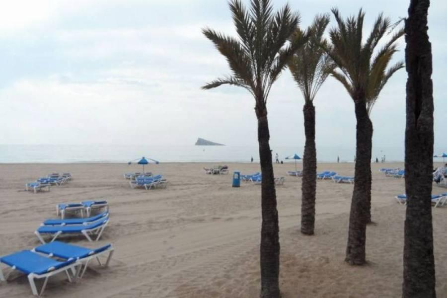 Benidorm,Alicante,España,3 Bedrooms Bedrooms,2 BathroomsBathrooms,Apartamentos,25500
