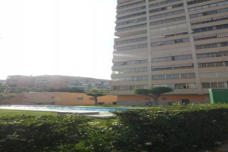 Benidorm,Alicante,España,1 Dormitorio Bedrooms,1 BañoBathrooms,Apartamentos,25523