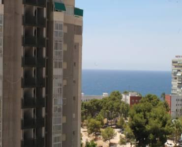 Benidorm,Alicante,España,1 Dormitorio Bedrooms,1 BañoBathrooms,Apartamentos,25666