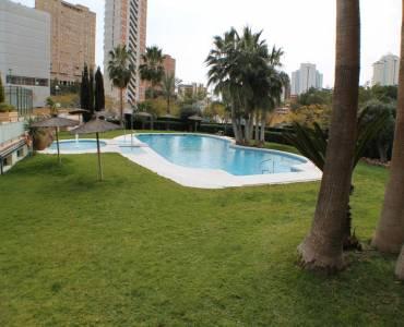 Benidorm,Alicante,España,1 Dormitorio Bedrooms,1 BañoBathrooms,Apartamentos,25793