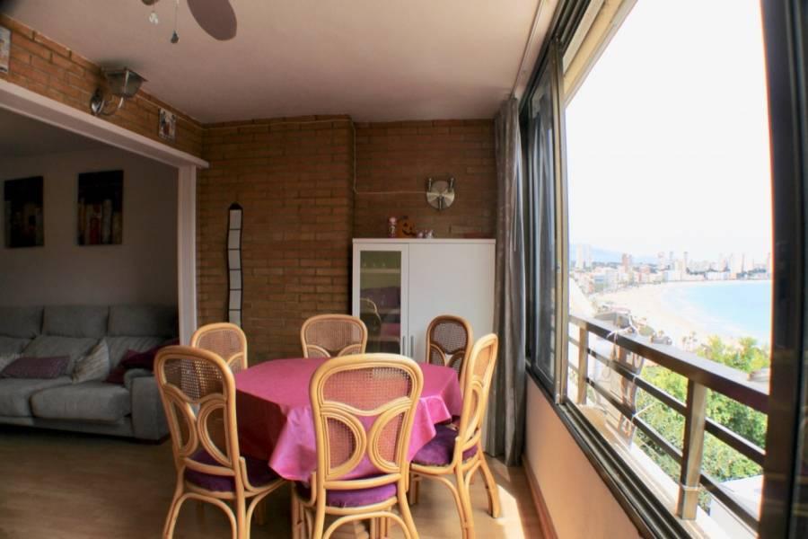 Benidorm,Alicante,España,1 Dormitorio Bedrooms,1 BañoBathrooms,Apartamentos,25837