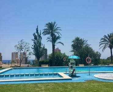 Benidorm,Alicante,España,2 Bedrooms Bedrooms,1 BañoBathrooms,Apartamentos,25860