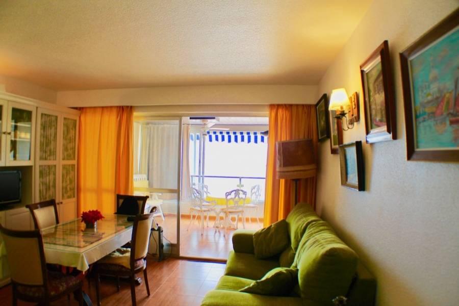 Benidorm,Alicante,España,1 Dormitorio Bedrooms,1 BañoBathrooms,Apartamentos,25864