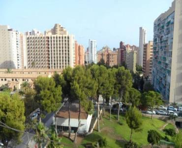 Benidorm,Alicante,España,2 Bedrooms Bedrooms,1 BañoBathrooms,Apartamentos,25889