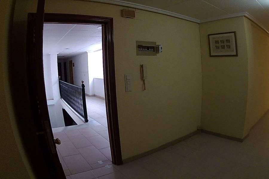 Elche,Alicante,España,1 BañoBathrooms,Apartamentos,26578