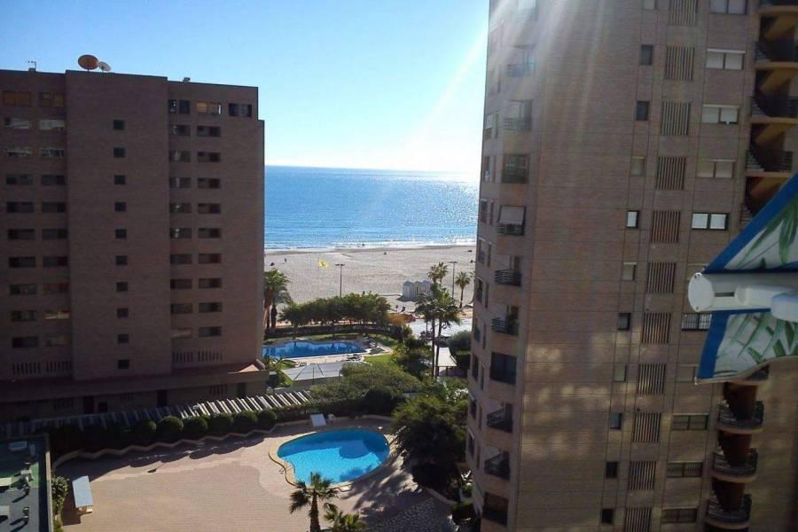 Benidorm,Alicante,España,1 BañoBathrooms,Apartamentos,26766