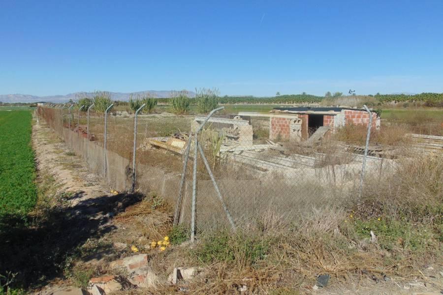 San Fulgencio,Alicante,España,Lotes-Terrenos,26872