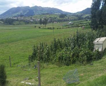 CAYAMBE,PICHINCHA,Ecuador,Lotes-Terrenos,3530