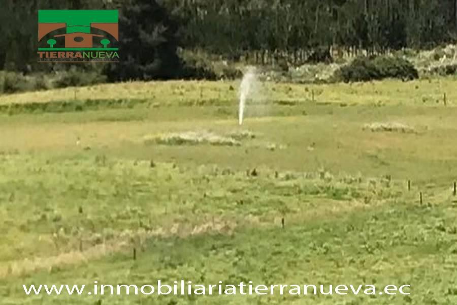 LATACUNGA,COTOPAXI,Ecuador,Finca,3556