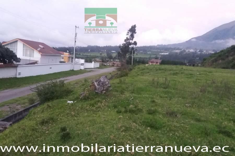 OTAVALO,IMBABURA,Ecuador,Lotes-Terrenos,3563