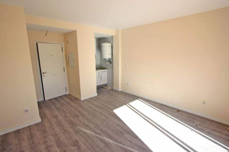 Pego,Alicante,España,1 Dormitorio Bedrooms,1 BañoBathrooms,Apartamentos,29778