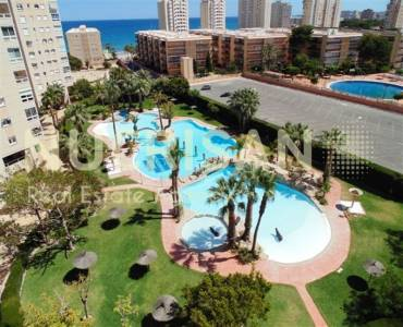 el Campello,Alicante,España,2 Bedrooms Bedrooms,2 BathroomsBathrooms,Apartamentos,31041