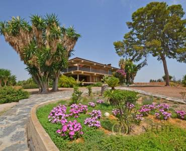 San Juan,Alicante,España,8 Bedrooms Bedrooms,7 BathroomsBathrooms,Lotes-Terrenos,31237