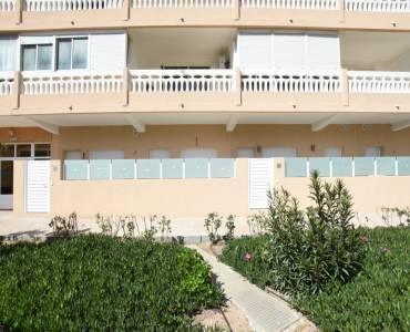 Torrevieja,Alicante,España,1 Dormitorio Bedrooms,1 BañoBathrooms,Apartamentos,31941