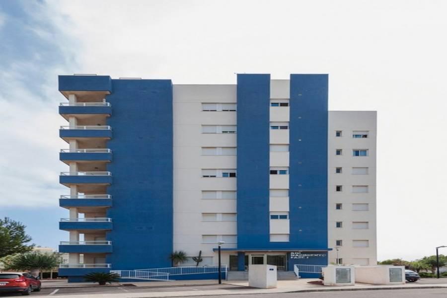 Dehesa de campoamor,Alicante,España,3 Bedrooms Bedrooms,2 BathroomsBathrooms,Apartamentos,31972