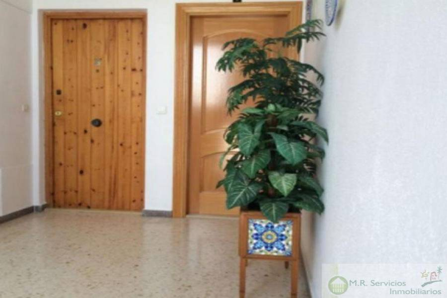 San Miguel de Salinas,Alicante,España,2 Bedrooms Bedrooms,1 BañoBathrooms,Pisos,3705