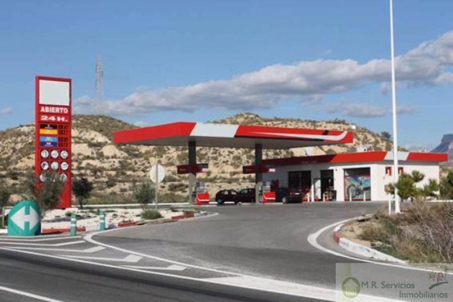 Alicante,Alicante,España,Fdo de Comercio-Negocio,3729