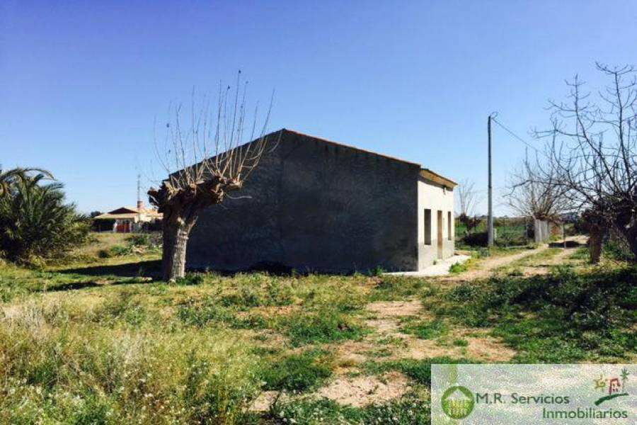 Almoradí,Alicante,España,3 Bedrooms Bedrooms,1 BañoBathrooms,Fincas-Villas,3779