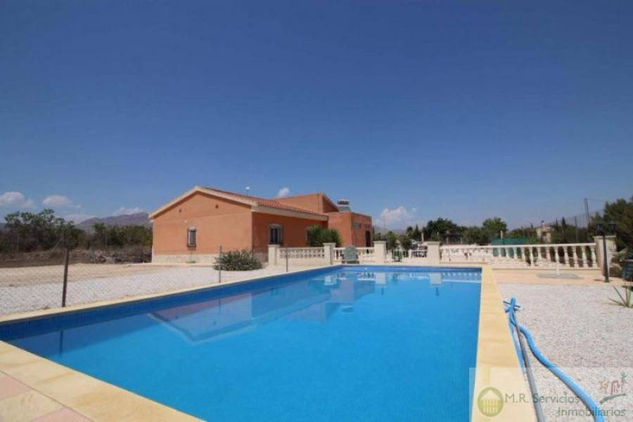 Albatera,Alicante,España,4 Bedrooms Bedrooms,2 BathroomsBathrooms,Finca rustica,3821