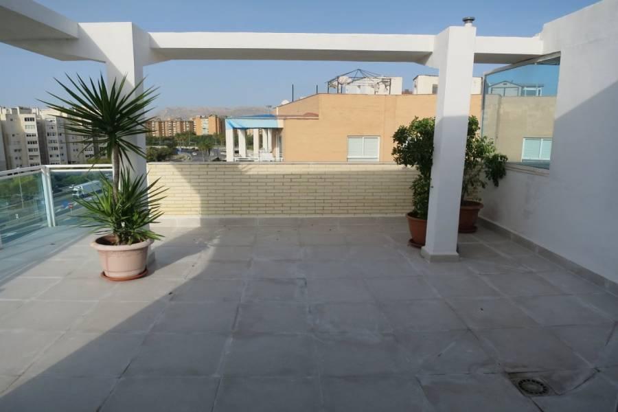 Alicante,Alicante,España,4 Bedrooms Bedrooms,2 BathroomsBathrooms,Atico,33951