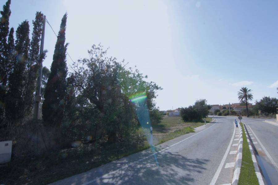 Elche,Alicante,España,Lotes-Terrenos,33954