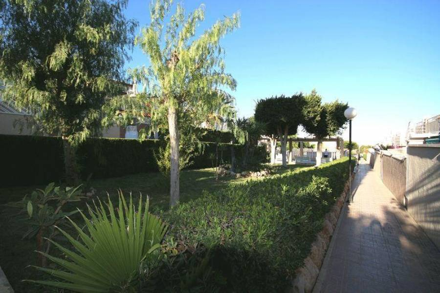 Torrevieja,Alicante,España,2 Bedrooms Bedrooms,1 BañoBathrooms,Cabañas-bungalows,3853
