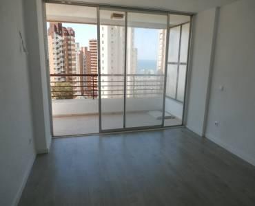 Benidorm,Alicante,España,1 Dormitorio Bedrooms,1 BañoBathrooms,Apartamentos,33992