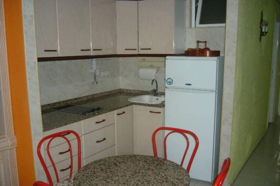 Benidorm,Alicante,España,1 Dormitorio Bedrooms,1 BañoBathrooms,Apartamentos,33994