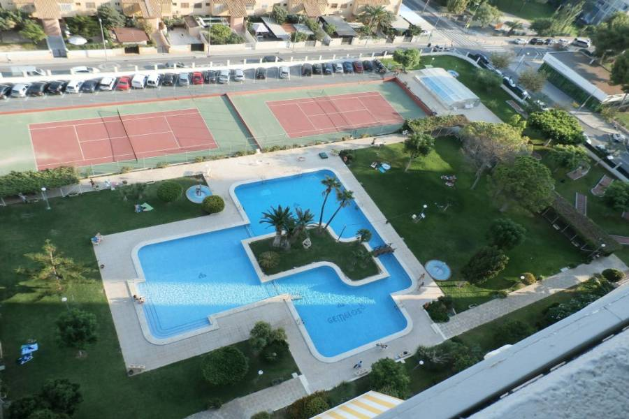 Benidorm,Alicante,España,1 Dormitorio Bedrooms,1 BañoBathrooms,Apartamentos,33999