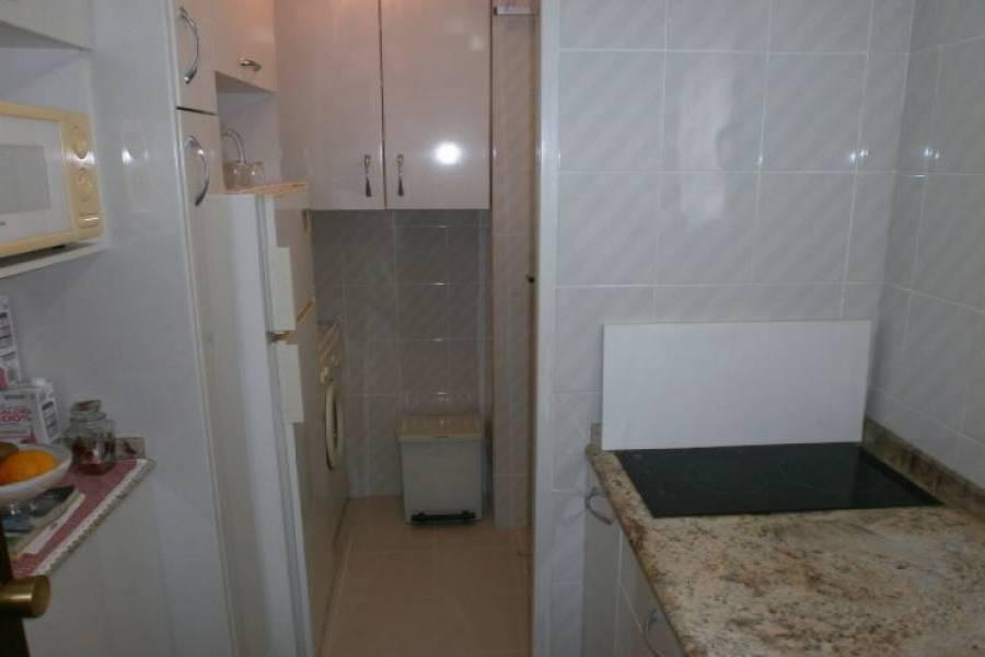 Benidorm,Alicante,España,1 Dormitorio Bedrooms,1 BañoBathrooms,Apartamentos,34012