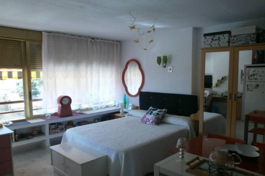Benidorm,Alicante,España,1 Dormitorio Bedrooms,1 BañoBathrooms,Apartamentos,34013