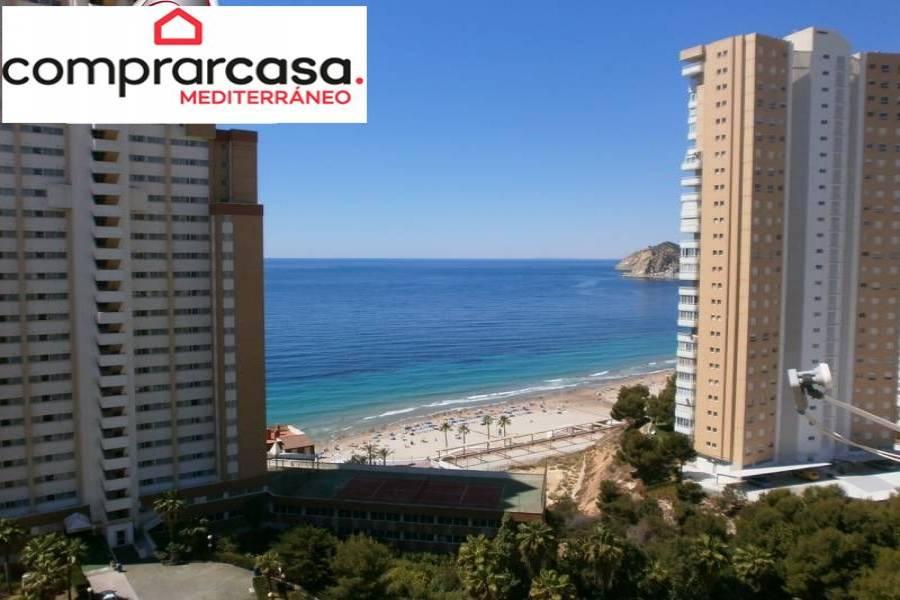 Benidorm,Alicante,España,1 Dormitorio Bedrooms,1 BañoBathrooms,Apartamentos,34021