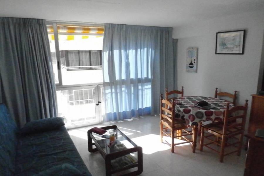 Benidorm,Alicante,España,1 Dormitorio Bedrooms,1 BañoBathrooms,Apartamentos,34034
