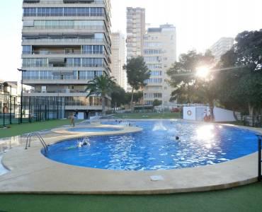 Benidorm,Alicante,España,1 Dormitorio Bedrooms,1 BañoBathrooms,Apartamentos,34039