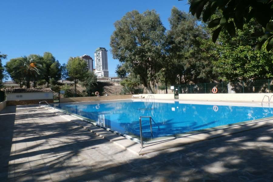 Benidorm,Alicante,España,1 Dormitorio Bedrooms,1 BañoBathrooms,Apartamentos,34047
