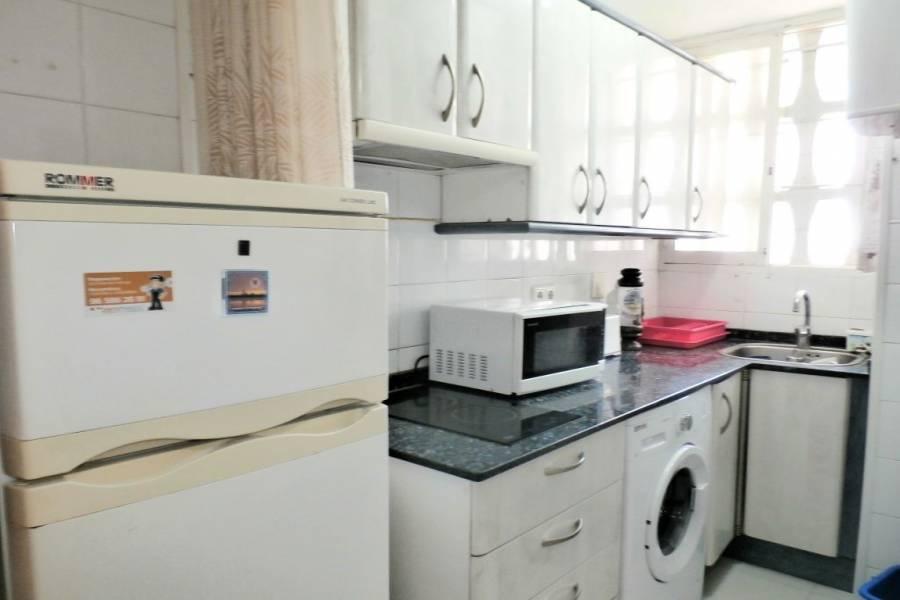 Benidorm,Alicante,España,1 Dormitorio Bedrooms,1 BañoBathrooms,Apartamentos,34050