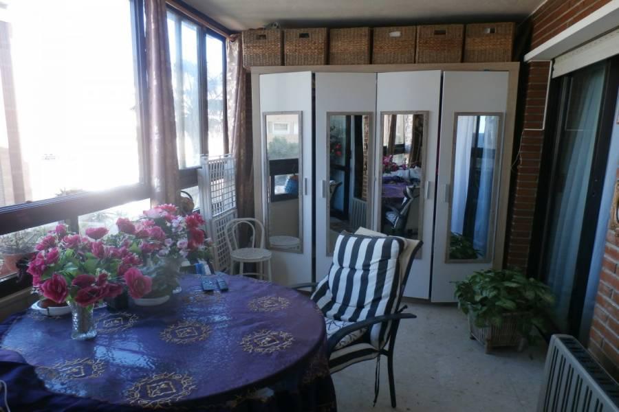Benidorm,Alicante,España,1 Dormitorio Bedrooms,1 BañoBathrooms,Apartamentos,34069