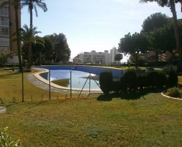 Benidorm,Alicante,España,1 Dormitorio Bedrooms,1 BañoBathrooms,Apartamentos,34073