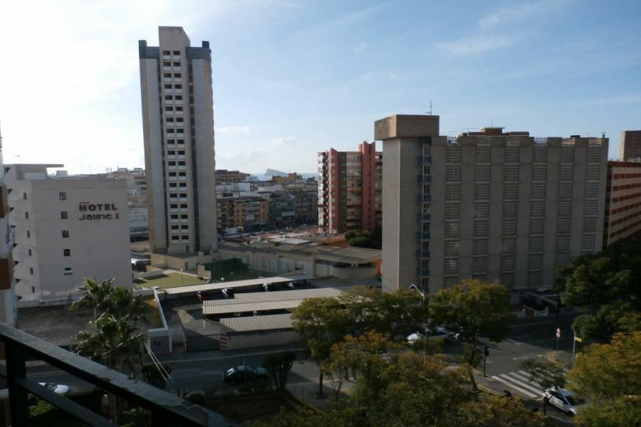 Benidorm,Alicante,España,1 Dormitorio Bedrooms,1 BañoBathrooms,Apartamentos,34074