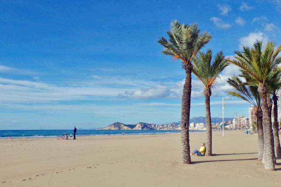 Benidorm,Alicante,España,2 Bedrooms Bedrooms,1 BañoBathrooms,Apartamentos,34081