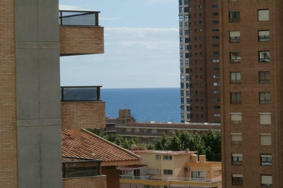 Benidorm,Alicante,España,1 Dormitorio Bedrooms,1 BañoBathrooms,Apartamentos,34099
