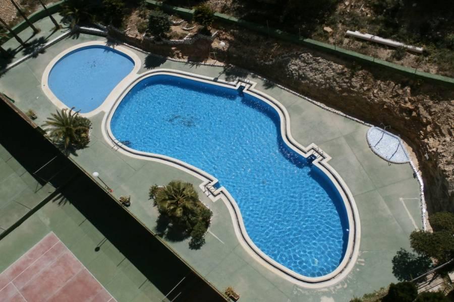Benidorm,Alicante,España,1 Dormitorio Bedrooms,1 BañoBathrooms,Apartamentos,34106