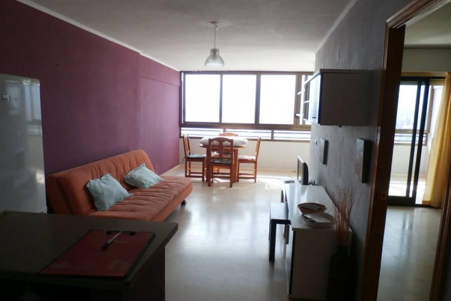 Benidorm,Alicante,España,1 Dormitorio Bedrooms,1 BañoBathrooms,Apartamentos,34113