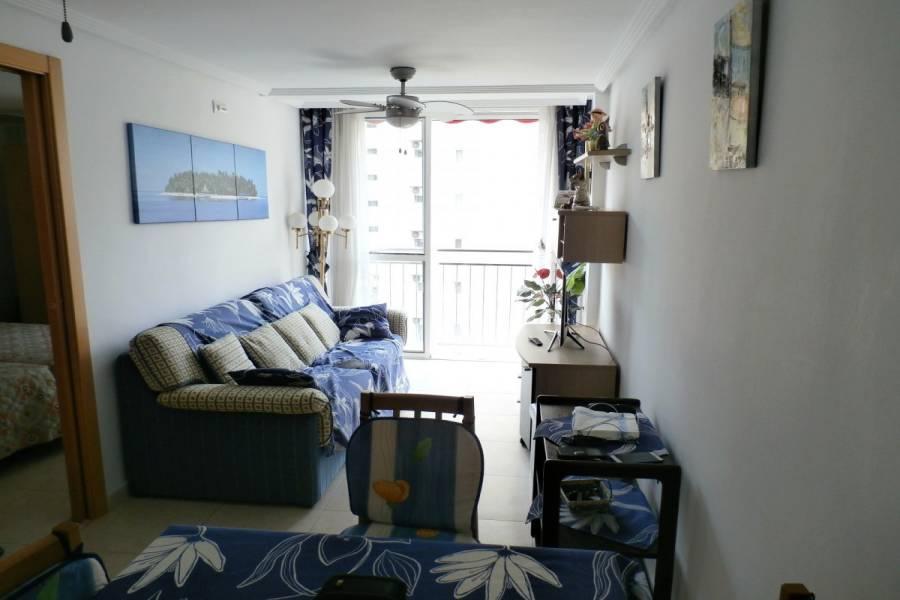 Benidorm,Alicante,España,2 Bedrooms Bedrooms,2 BathroomsBathrooms,Apartamentos,34123