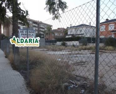 Elche,Alicante,España,Parcela,34144